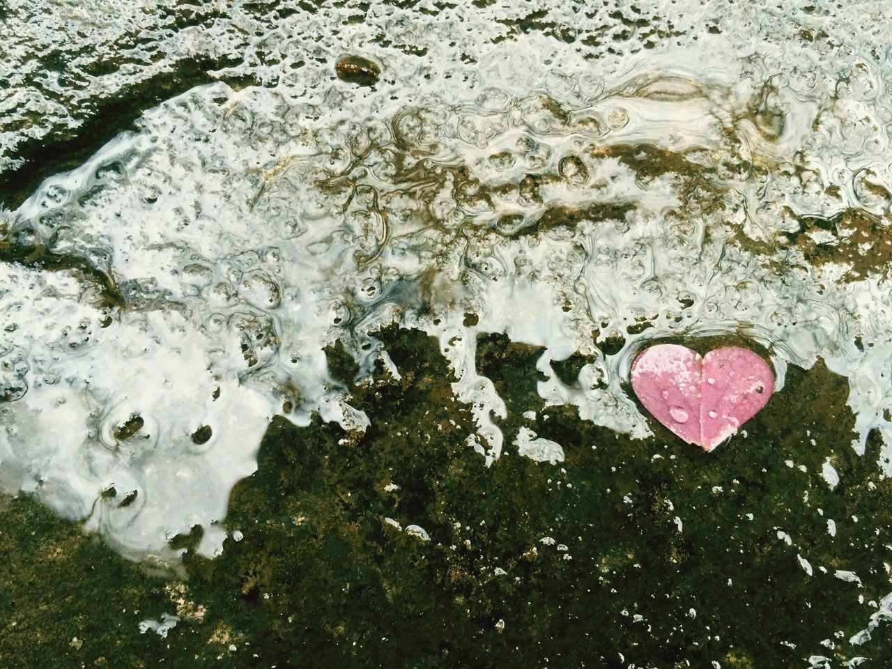 water, heart shape, no people, nature, day, outdoors, close-up, beauty in nature