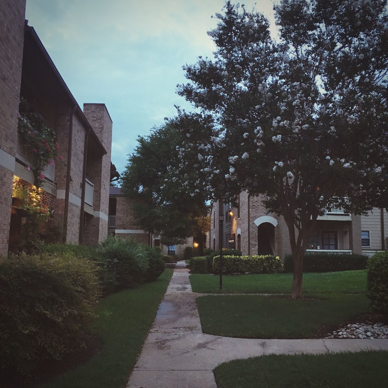 tree, architecture, building exterior, built structure, the way forward, sky, outdoors, no people, walkway, day, nature, grass