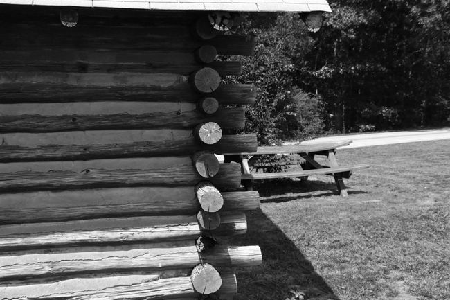 Abstractsho Bench Blackandwhite Photography Close-up Day Detail Edge Of The World Empty Eye4photography  EyeEm Gallery Group Of Objects In A Row Log Cabin No People Old Outdoors Park Park - Man Made Space Park Bench