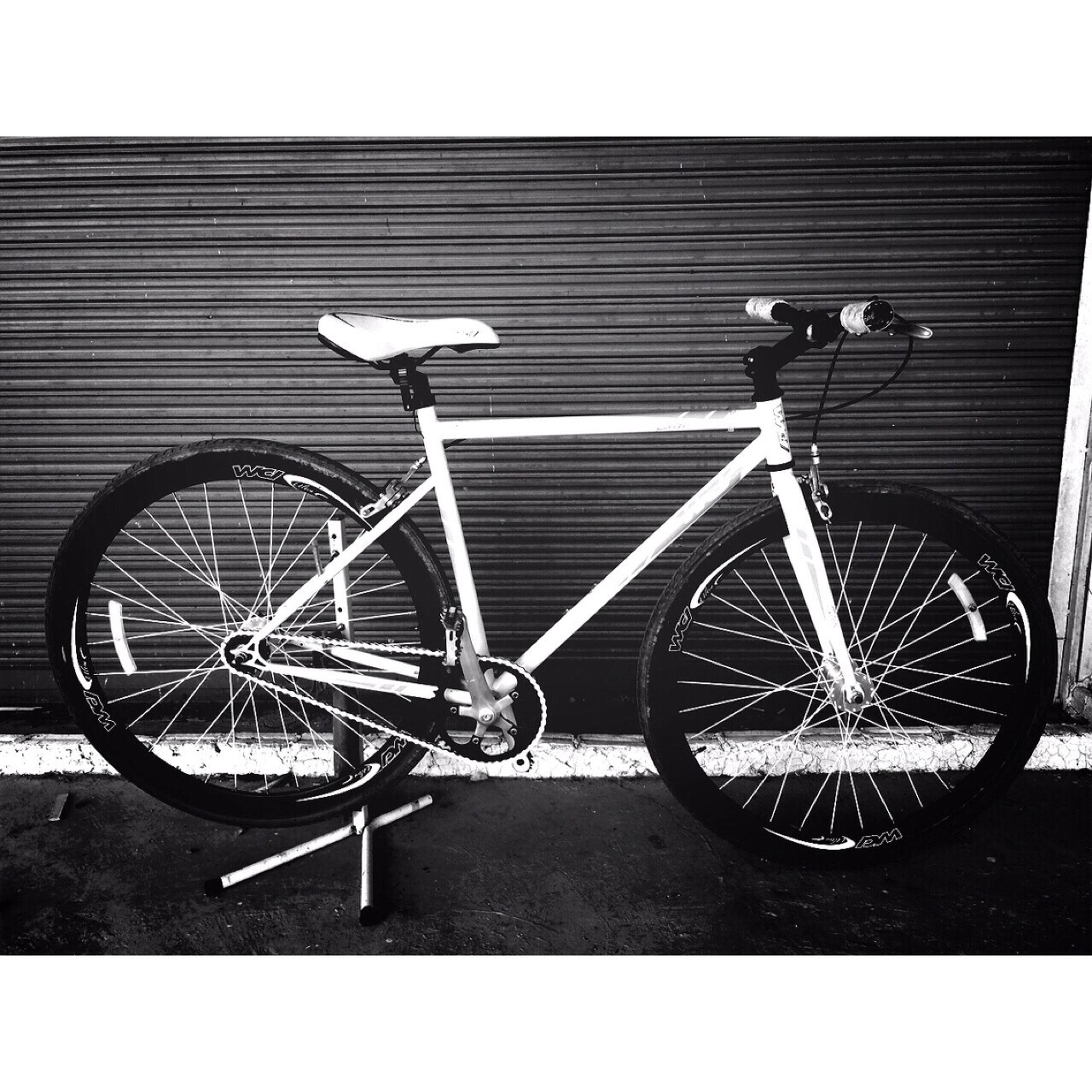 จักรยานคันโปรด Fixed Gear ไม่ได้ปั่นนาน คิดถึงงงงว❤️