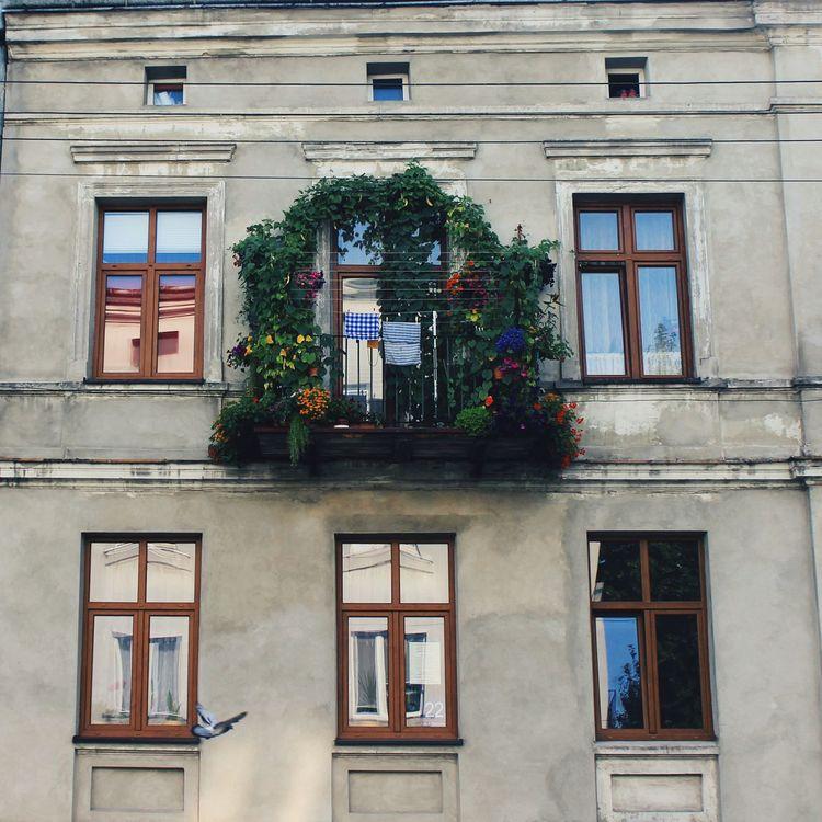 Architecture Balcony Exterior Façade Poland VSCO Window The Architect - 2016 EyeEm Awards