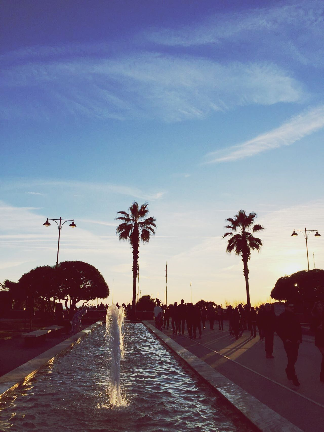 People. Sky Palm Tree Water Outdoors Day People Sea And Sky Sunset Fountain City People Photography People And Places First Eyeem Photo