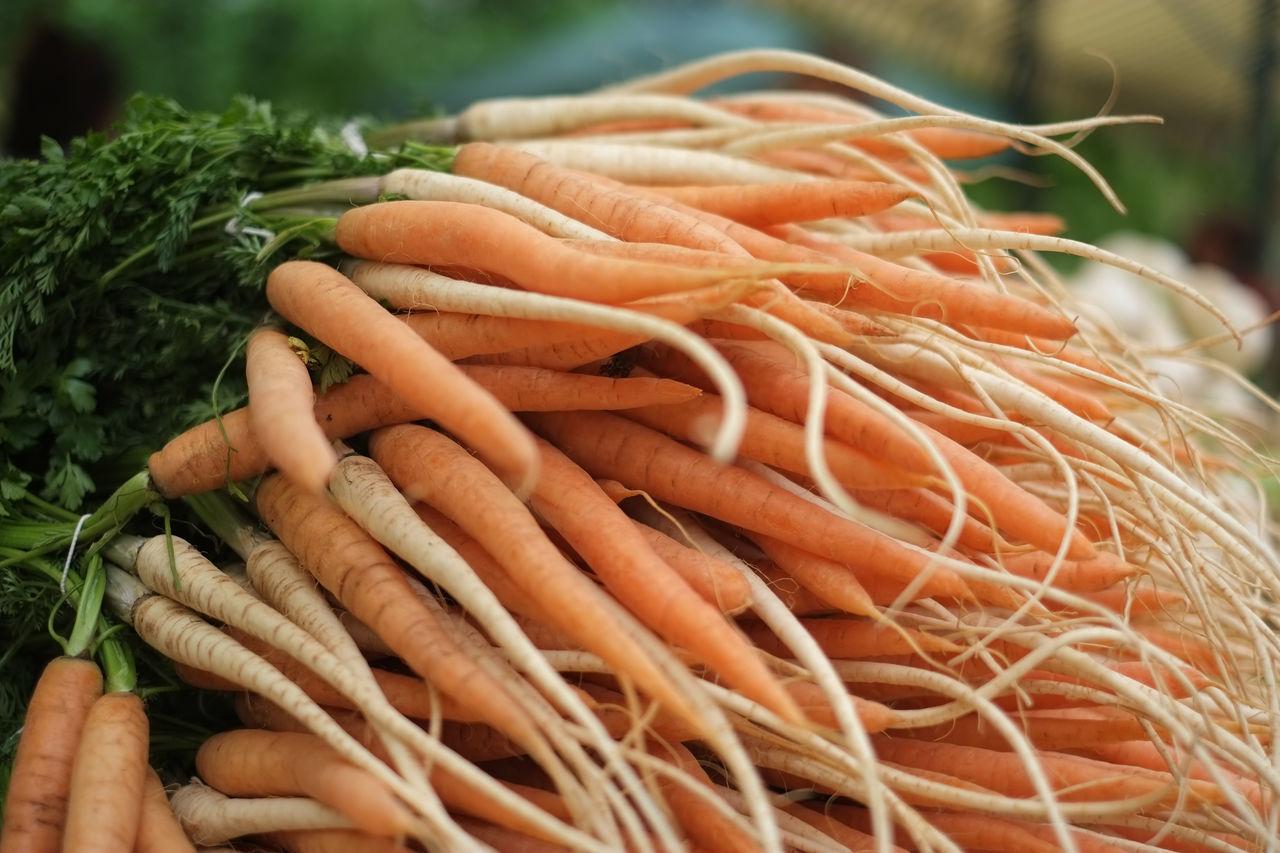 Beautiful stock photos of farm, Abundance, Aliment, Carrots, Choice