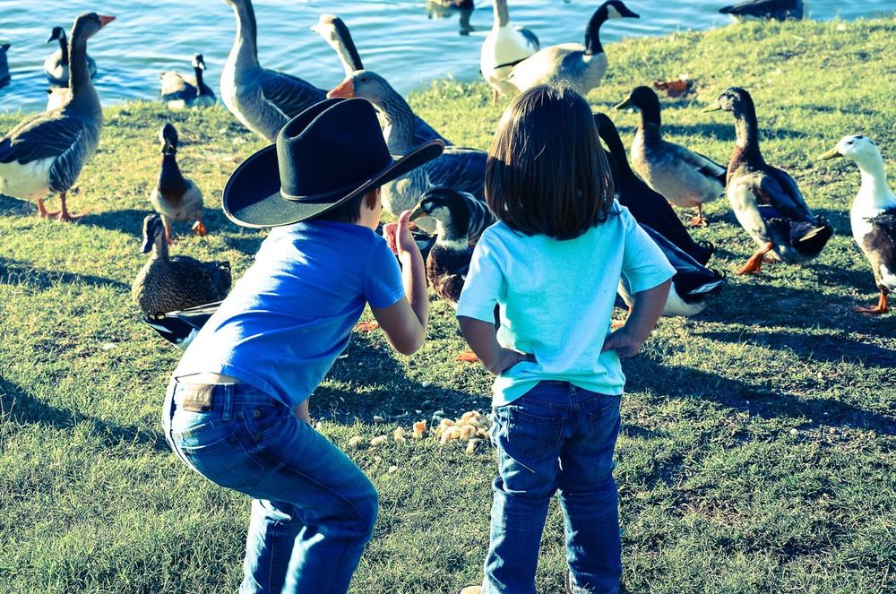 Casual Clothing Togetherness Day Rear View Field Girls Real People Childhood Boys Outdoors Leisure Activity Child Grass Lifestyles Friendship Nature People Adult Cowboy Hat Little Cowboy Brothers Brother