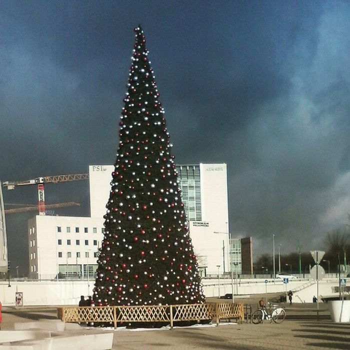 After The Snow PCC Poznań Christmastree Dark Sky Blue Cold Wind Freezee 😨👌🍩🎑❄❄❄🚇