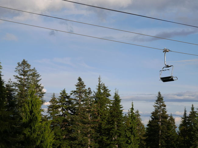 Cable Cloud Cloud - Sky Day Lonely Mountain Nature No People Off Season Outdoors Overhead Cable Car Scenics Ski Lift Skiing Sky Tranquility Tree