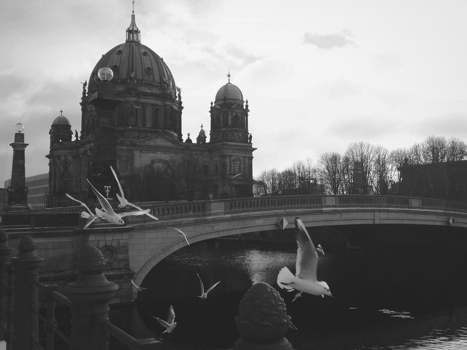 When Mitte takes a break from tourists First Eyeem Photo Mitte Urbanromantix Berlin Photography Berlin Awesomeberlin Bw