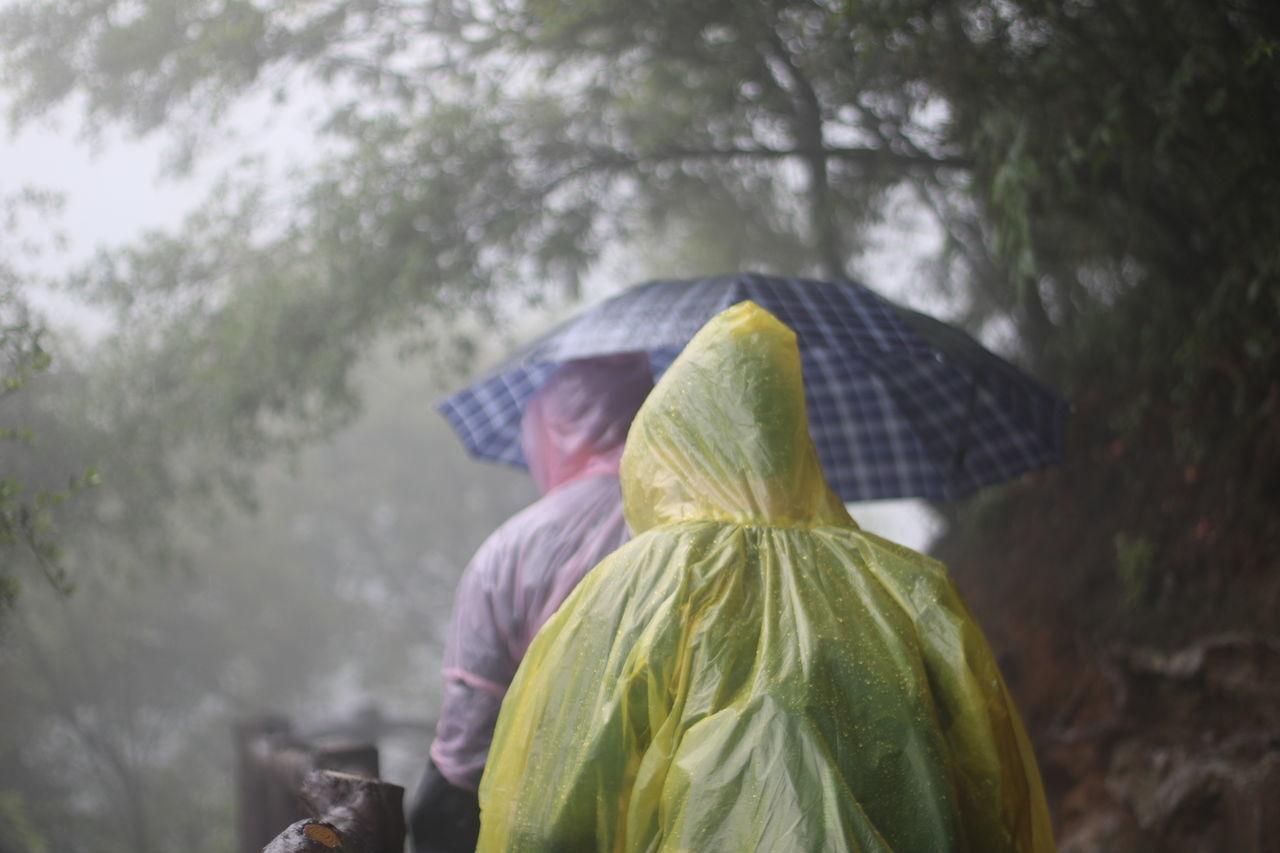 Men In Raincoat Holding Umbrella By Trees