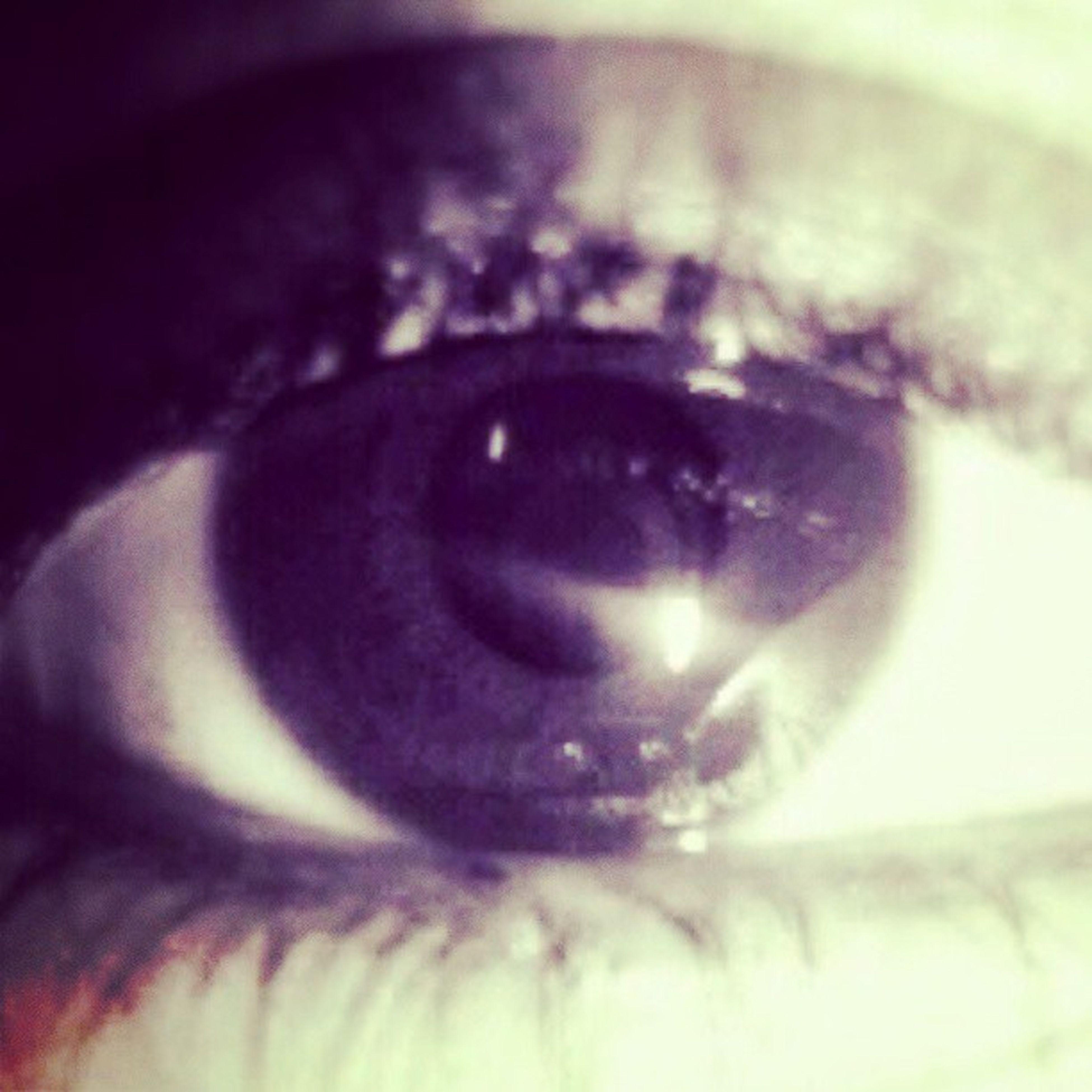 close-up, indoors, extreme close-up, selective focus, human eye, eyelash, extreme close up, part of, sensory perception, detail, eyesight, macro, focus on foreground, human skin, human face, reflection, single object