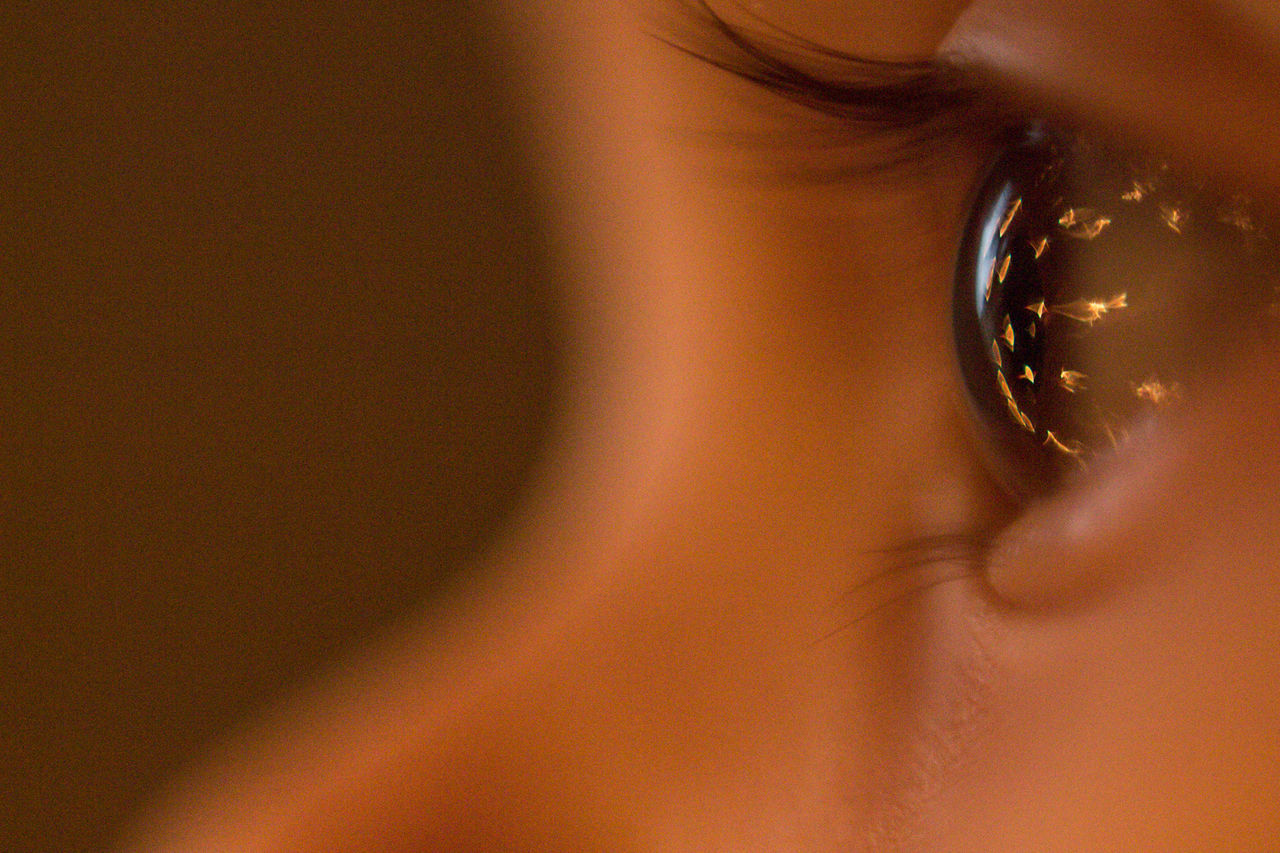 innocent eye. Adult Baby Eyes Beauty Close-up Eyeball Eyelash Eyesight Human Body Part Human Eye One Person Sensory Perception Women