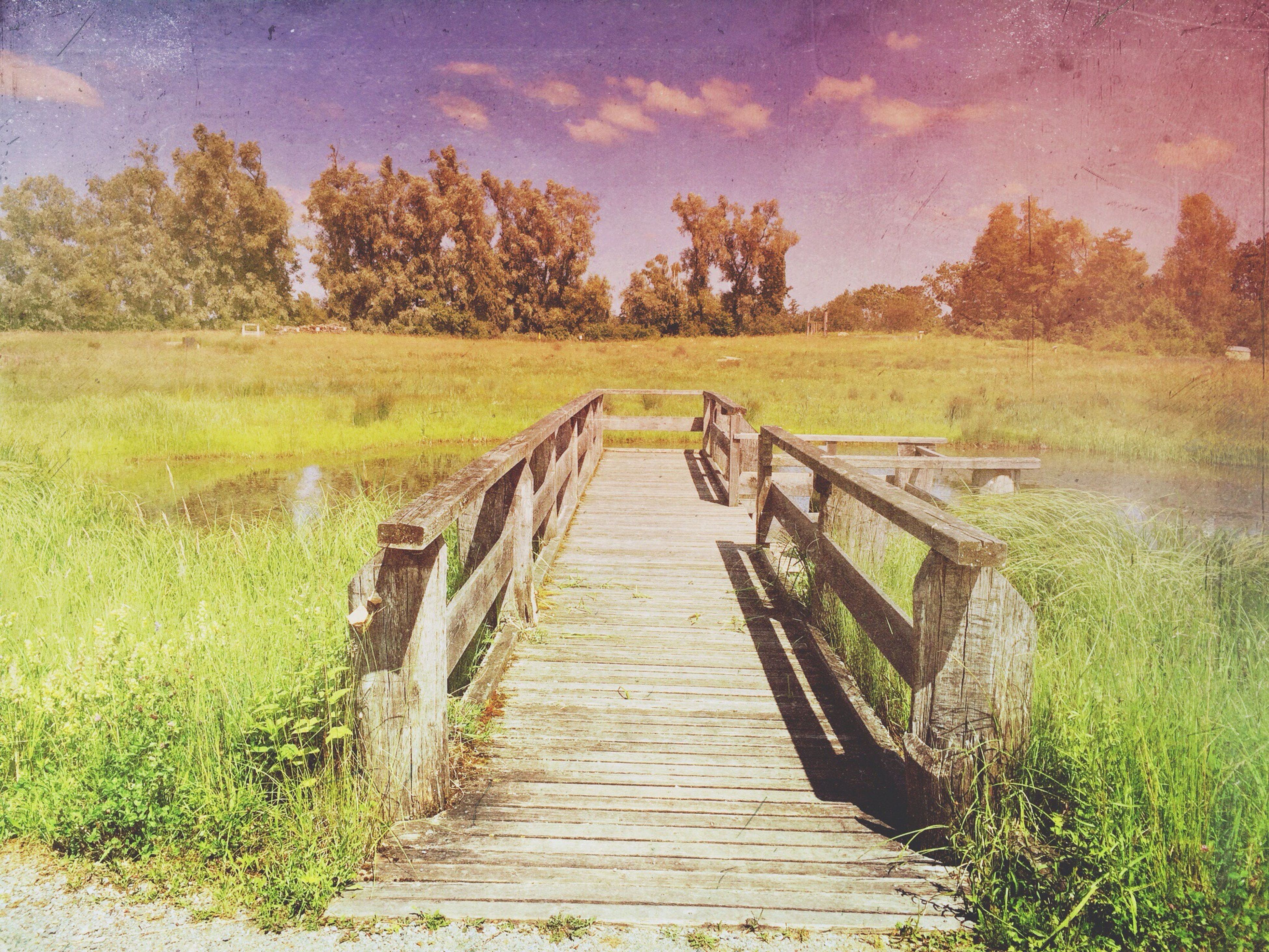the way forward, grass, boardwalk, tranquility, tree, wood - material, tranquil scene, sky, diminishing perspective, railing, nature, footbridge, scenics, growth, water, beauty in nature, wooden, landscape, wood, plant