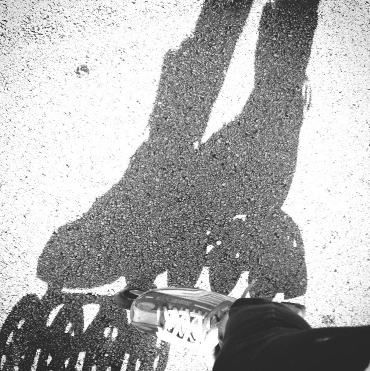Light And Shadow Skater Girl