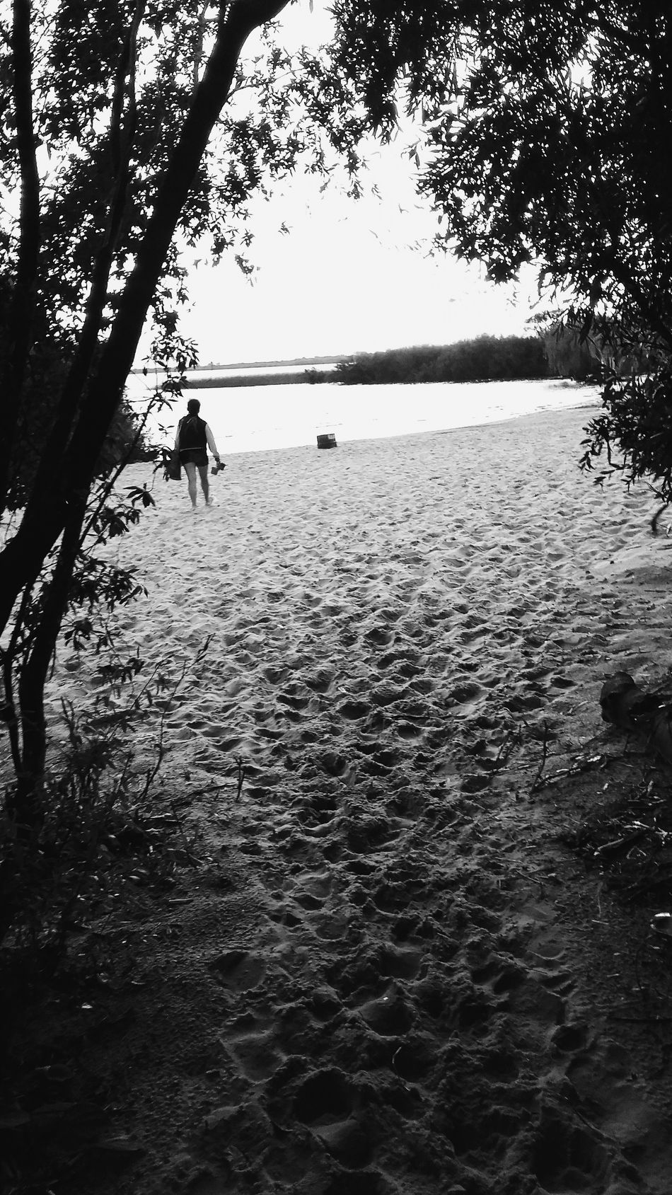 Vscocam Playa BeachOutside Camino Arboles , Naturaleza Blackandwhite Photography Blackandwhite Arena Rio Huellas Hidden Gems  Hiddengems