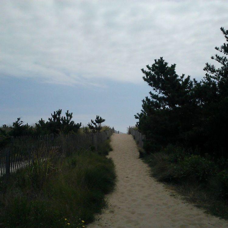 Over the dunes we go... FenwickIsland Oceancitycool
