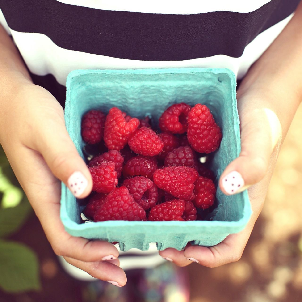 Midsection View Of Woman Holding Containers Of Strawberries
