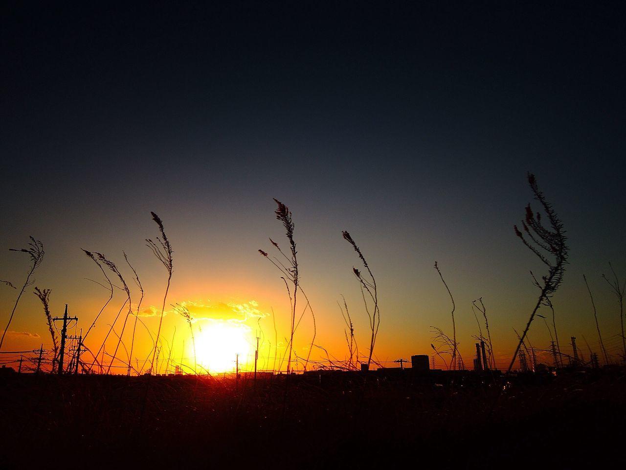 おつかれさまでした。 Sunset Afterglow 夕暮れ時 Twilight おつかれさま NikonP330