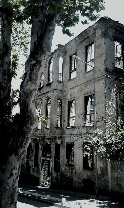 Architecture Building Exterior Built Structure Abandoned Damaged History Day Tree Old Ruin Outdoors No People Blackandwhite Black And White Monochrome Istanbul Istanbul City Istanbul Turkey Istanbul Blackandwhite Streetphotography City Colours Of Life Walking Around Tranquility
