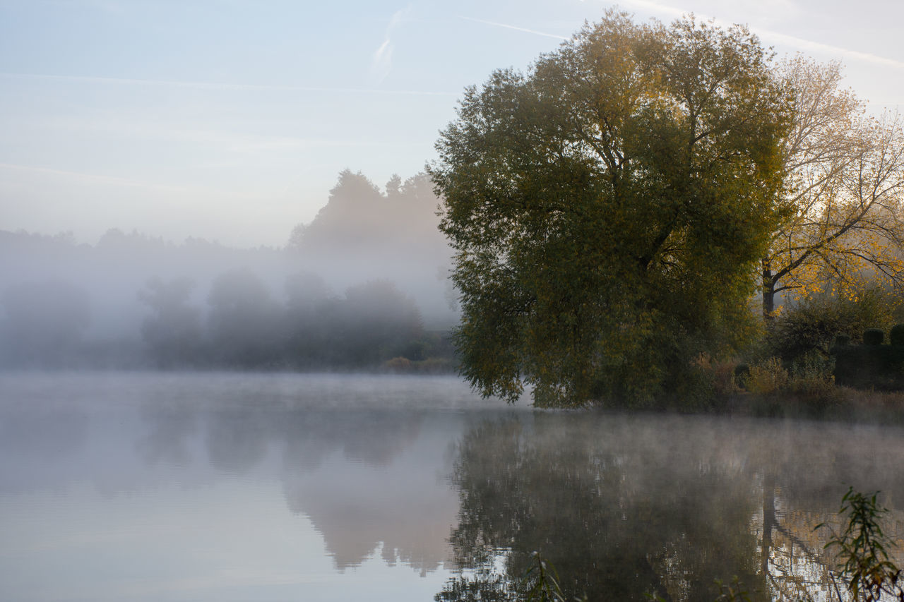Autumn Beauty In Nature Fog Lake Landscape Misty Misty Morning Nature No People Outdoors Reflection Schalkenmehren Tranquil Scene Tranquility Tree Water