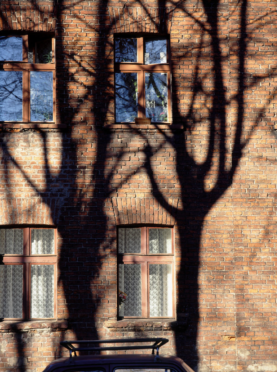 window, shadow, no people, built structure, architecture, day, old-fashioned, building exterior, outdoors, tree