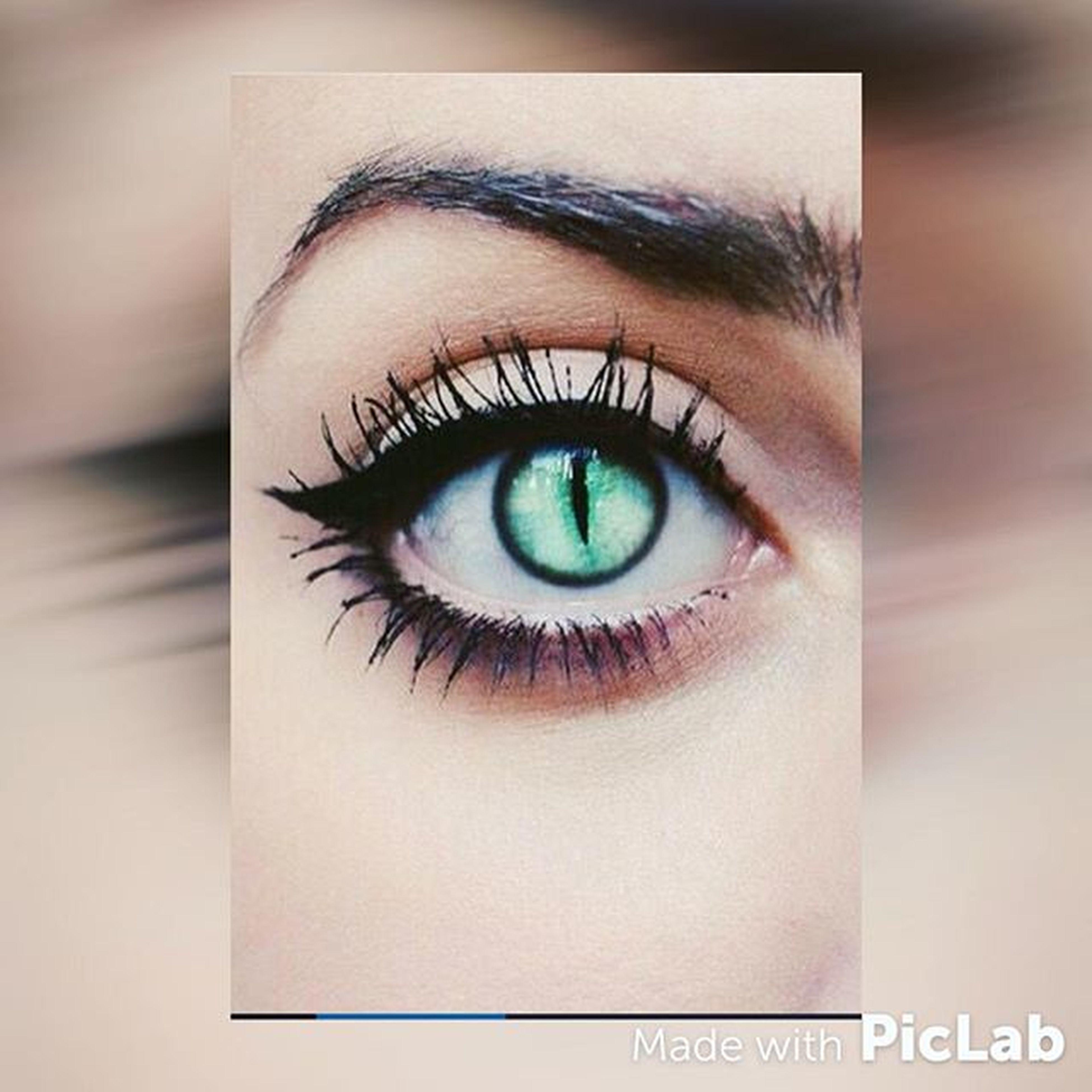 human eye, close-up, indoors, eyelash, eyesight, part of, sensory perception, circle, iris - eye, extreme close-up, full frame, portrait, reflection, looking at camera, human face, studio shot, eyeball