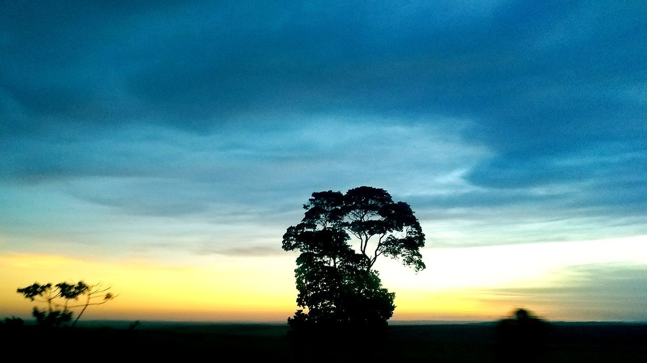 sunset, silhouette, tranquility, tree, nature, sky, tranquil scene, scenics, beauty in nature, cloud - sky, landscape, dramatic sky, no people, outdoors, growth, day
