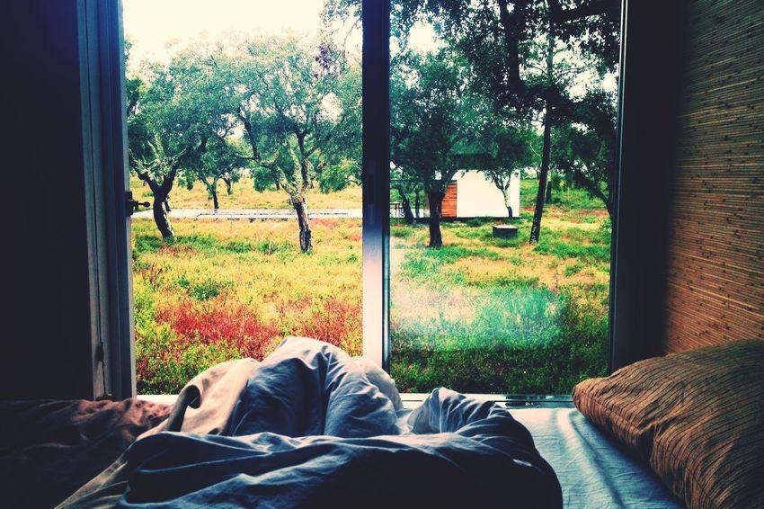 Perfect Enjoying The View Goodmorning Bestfriends