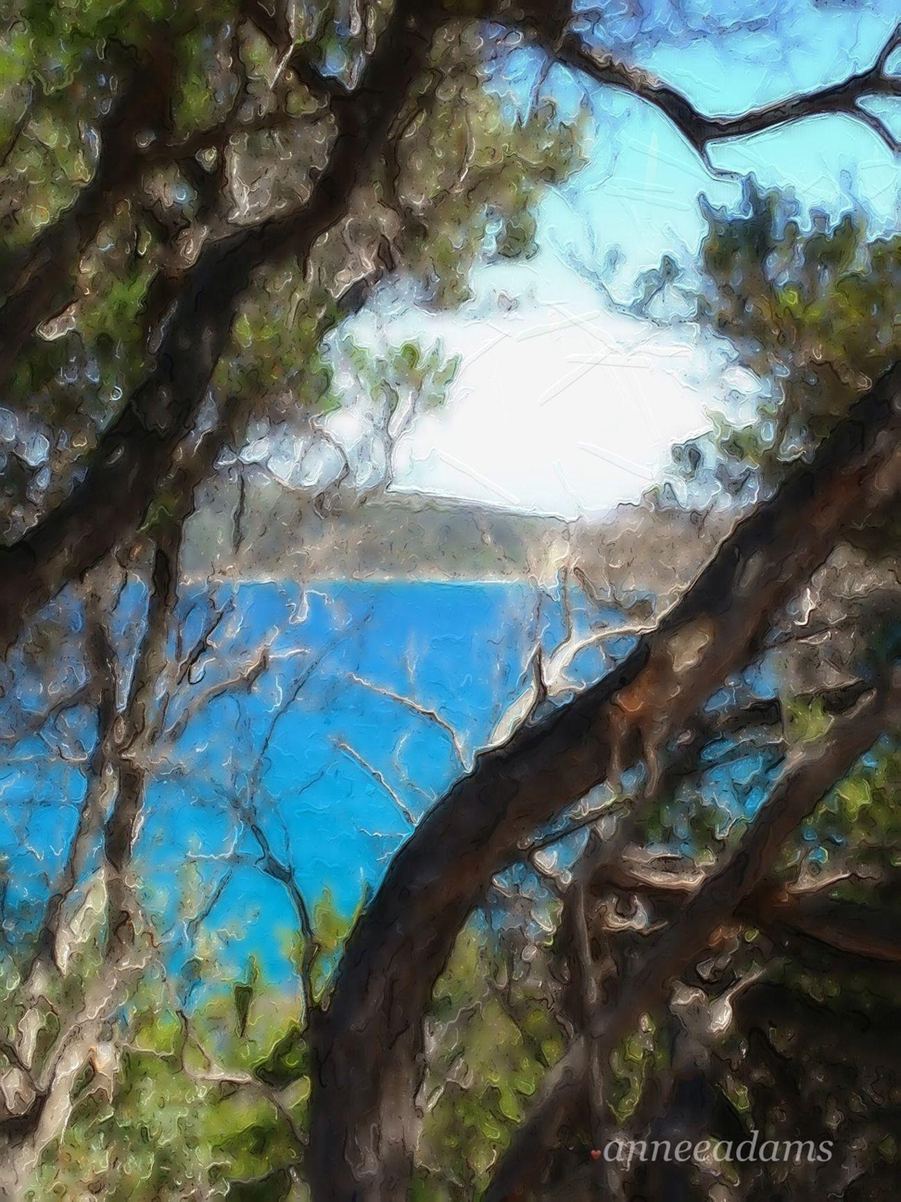 Beachphotography Divelandscape