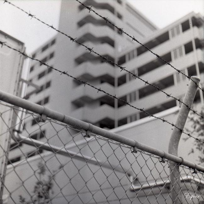 Architecture City Life Minolta Autocord B&WPhoto Street Photography