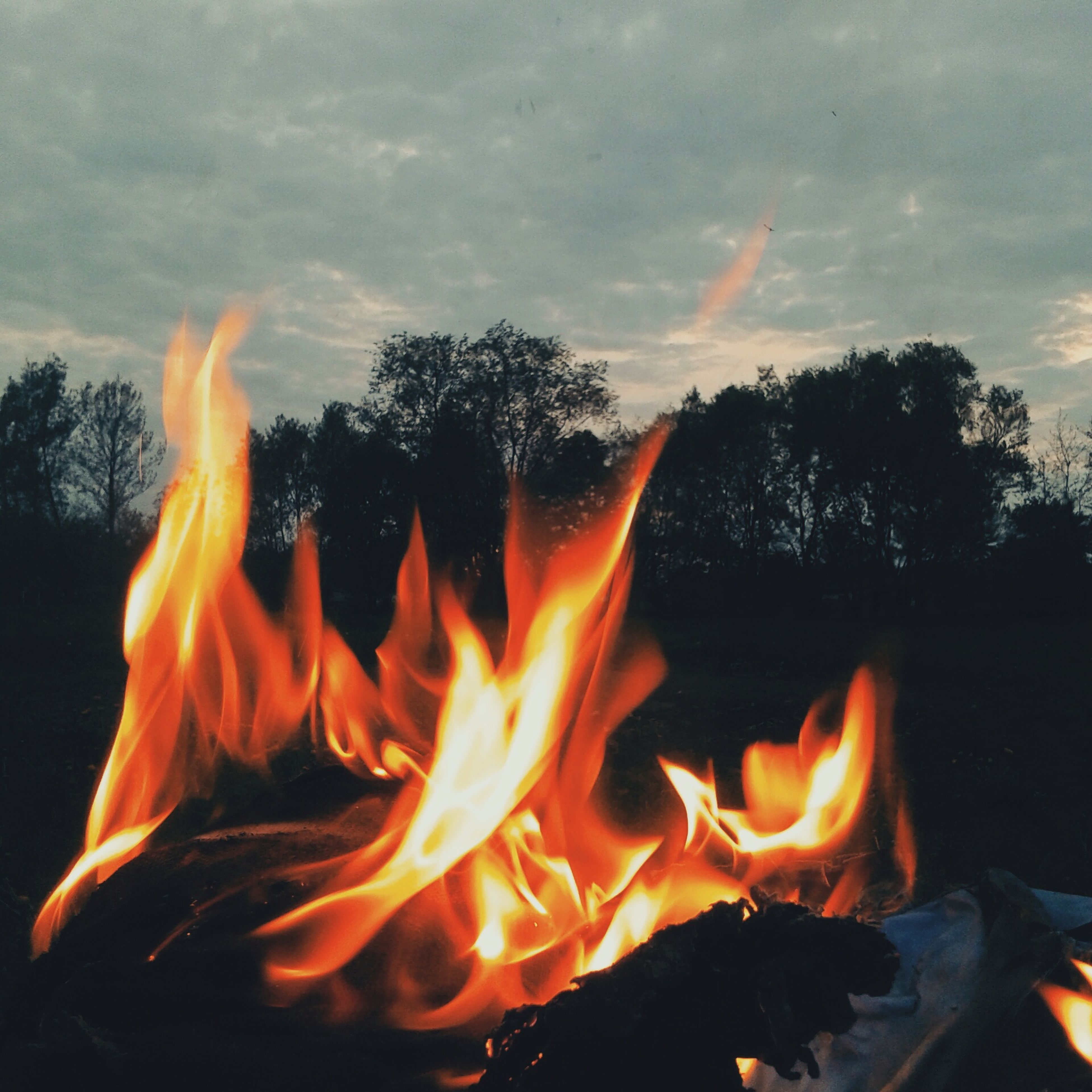 flame, burning, fire - natural phenomenon, heat - temperature, bonfire, fire, firewood, campfire, glowing, heat, orange color, tree, sunset, smoke - physical structure, outdoors, sky, close-up, motion, no people, camping
