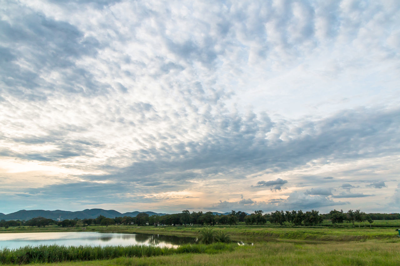 Landscape in cloudy day with fluffy cloud Background; Beauty In Nature Blue Sky; Cloud - Sky Cloudy; Day Evening; Field Fluffy Cloud; Grass; Green; Landscape Meadow; Mountain; Nature No People Outdoors Pond; Scenics Sky Tranquil Scene Tranquility Tree Tropical; Water