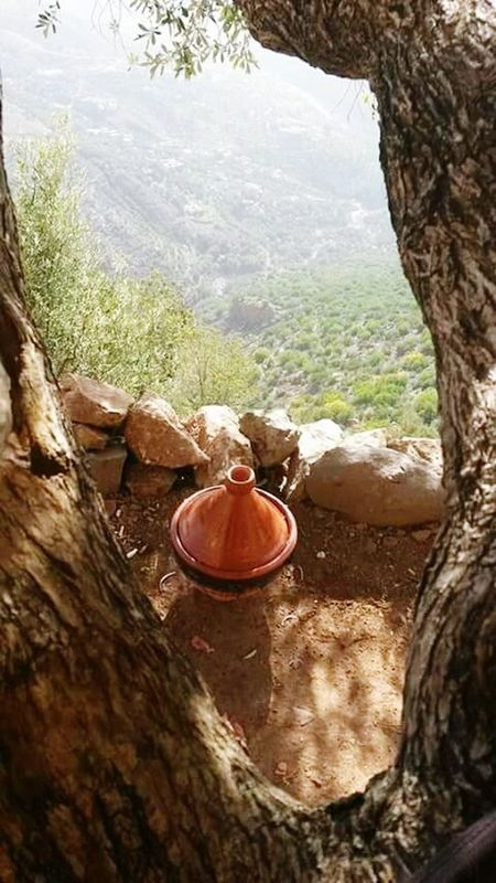 Witmdone Grotte Wild Life Tajine Moroccan Food Un Tajine Marocain 100% ♥♥