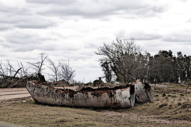 Argentina Argentina Photography Beauty In Nature Campo CampoArgentino Country Country Life Field Guardiavieja Laboulaye No People Non-urban Scene Old Rural Rural Exploration Rural Landscape Rural Life Rural Scene Rural Scenes Tinroof Tranquil Scene Tranquility Tree