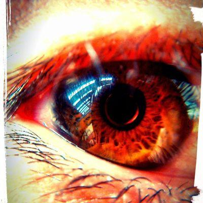 El ojo, las puertas del alma... Nofilter ,Macro ,Lente