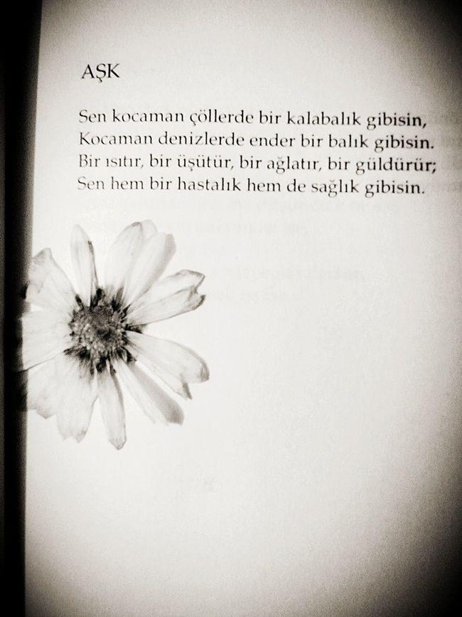 Ask💚 Papatya🌻 Özdemir Asaf 👍