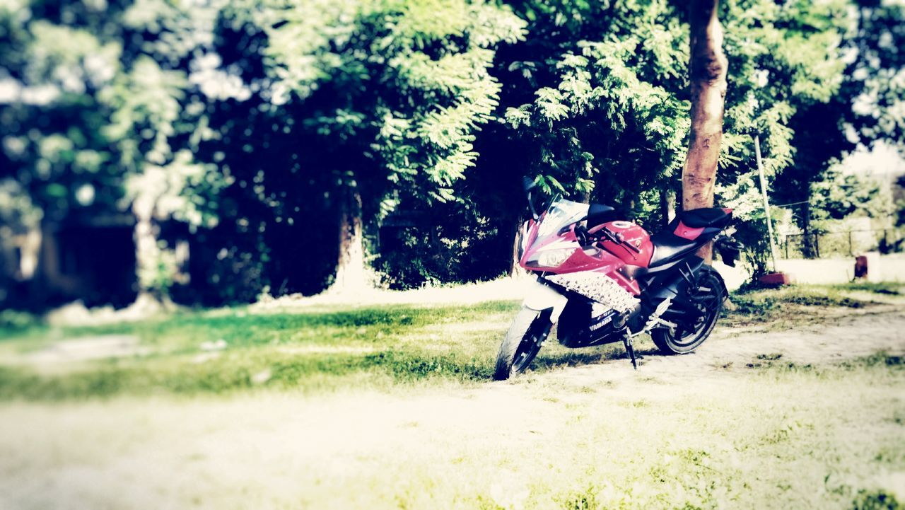Tree Riding Grass Outdoors Transportation Day Nature Beauty In Nature Horizontal Check This Out Editing Taking Photos Photography Random Shots First Eyeem Photo Randam My Bike Yamaha R15 Land Vehicle My Bike. Horizontal Grass Nature Transportation Tree
