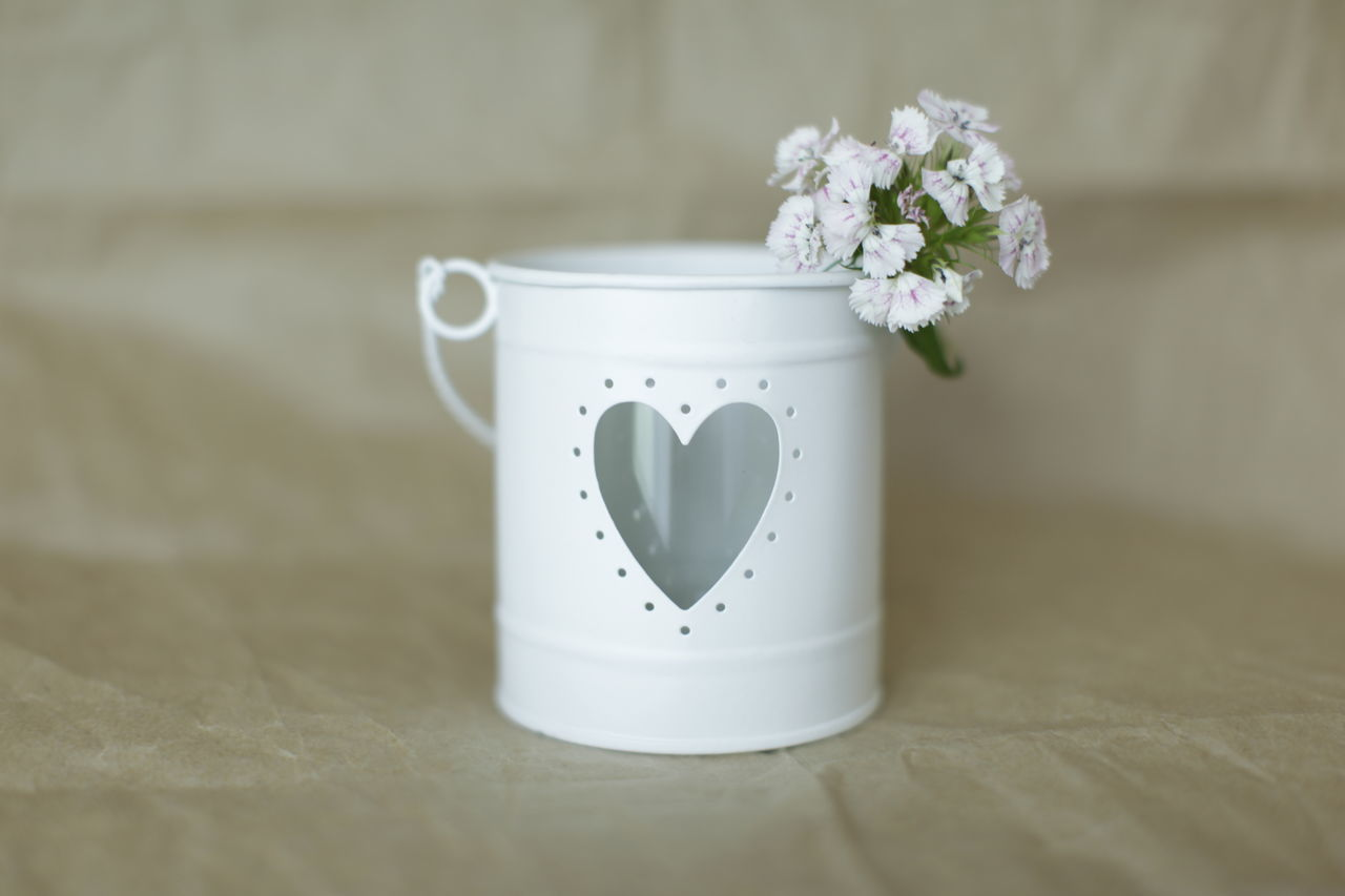 white flowers in a white container Container Flower Flower Head Fragility Freshness Heartshape White