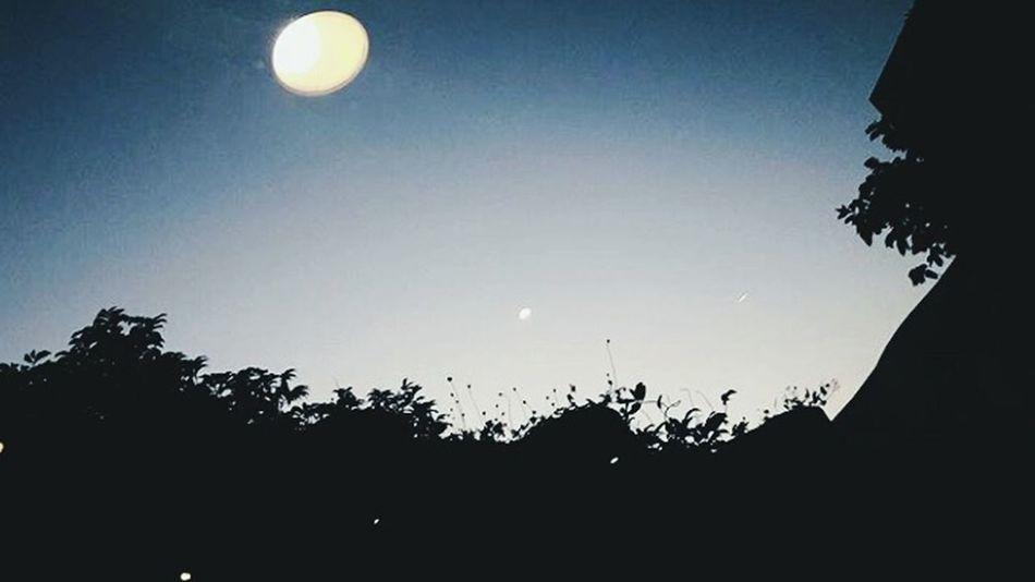 Need to focus on greater opportunities. Relaxing Chilling Unwind Nightphotography Eyeem Photography EyeEm Best Shots Eyeem Philippines EyeEm Team EyeEm Team Adventure! The OO Mission EyeEm Best Shots - Nature The 00 Mission Eyeem Market