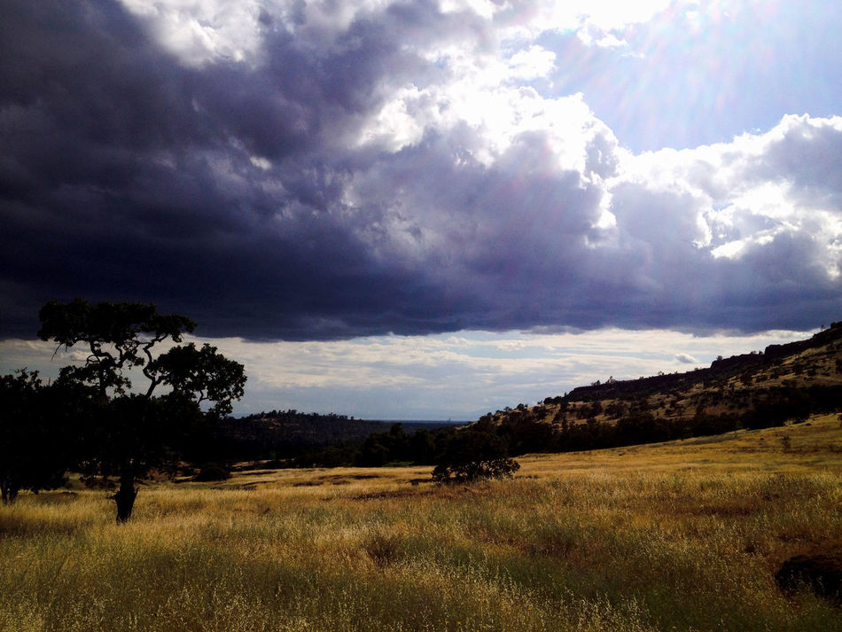Ominous clouds over Upper Bidwell Park California IPhone Photography IPhone4s Bidwell Park Ominous Ominous Sky Ominous Clouds Golden Field Contrast Dark And Light Cloud - Sky Nature Dramatic Sky Landscape Beauty In Nature Storm Cloud Outdoors Rural Scene