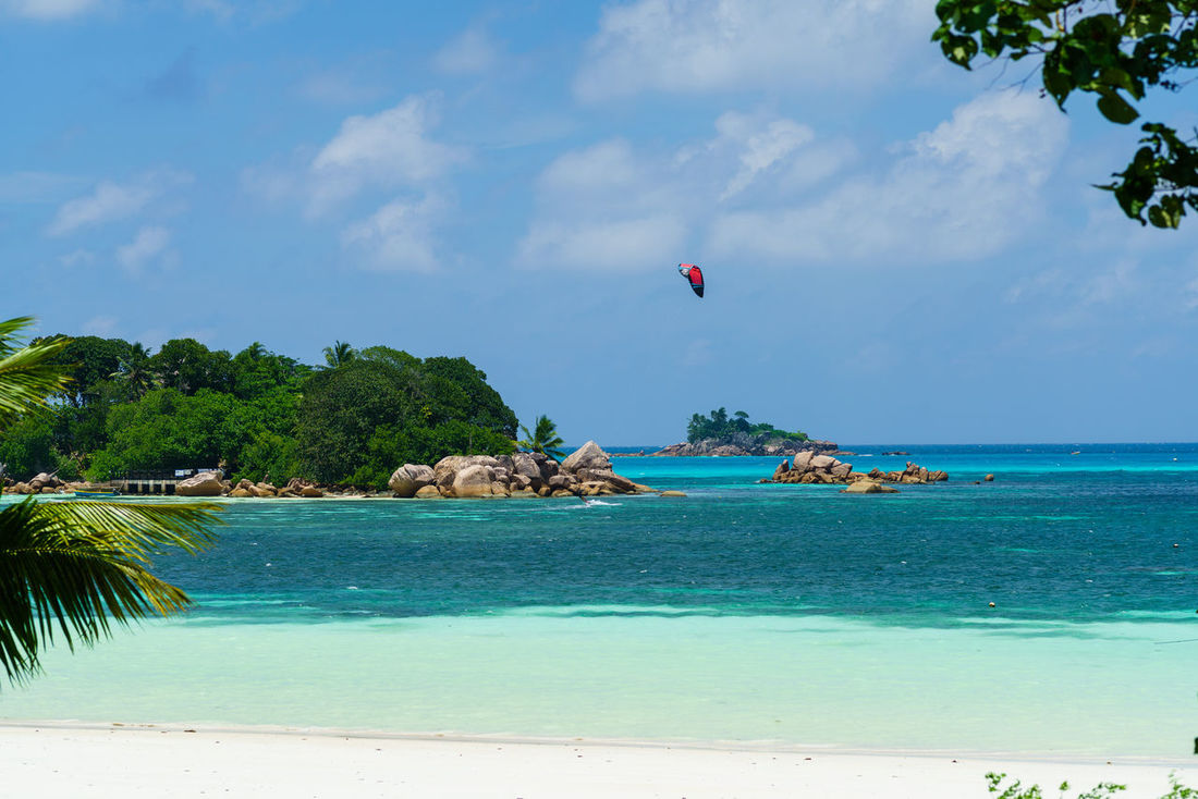 Anse Volbert, Seychelles — Cote d'Or of Praslin island Beach Beachphotography Beauty In Nature Blue Day Horizon Over Water Kite Kitesurfer Kitesurfing Nature One Person Outdoors People Praslin Scenics Sea Seychelles Sky Tranquil Scene Tranquility Tree Vacations Water