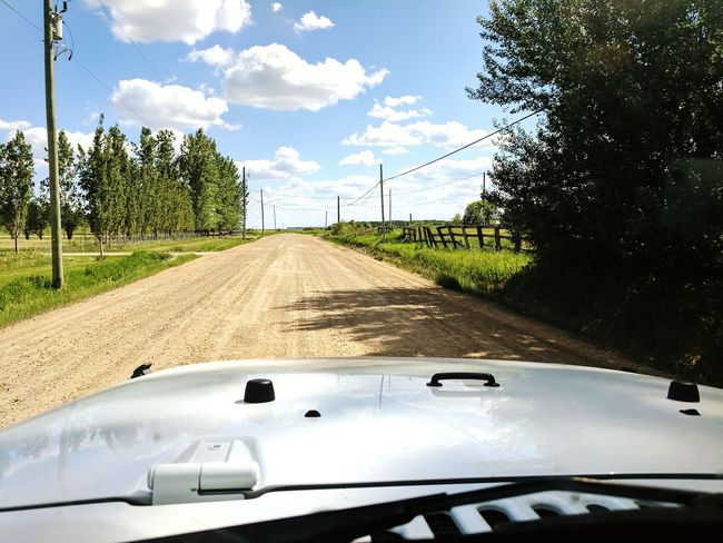 Transportation Cloud - Sky Day No People Tree Outdoors Sky Nature Dashboard View Dashboard Cam Road Jeep Life Jeep Wrangler JK Jeep Life ❤ Jeep Wrangler  Google Pixel XL Live For The Story
