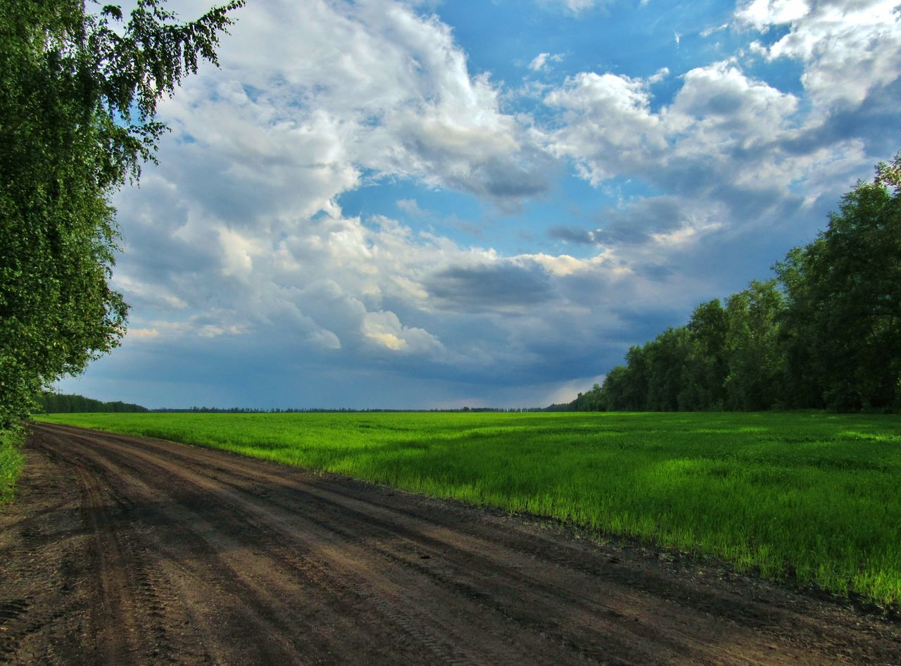 Field road.. Agriculture Cloud - Sky Clouds Day Field Field Freshness Green Color Growth Horizon Horizontal Landscape Nature No People Outdoors Road Rural Scene Scenics Shadow Shadows & Lights Sky Sky And Clouds Sky_collection Skyporn Summer