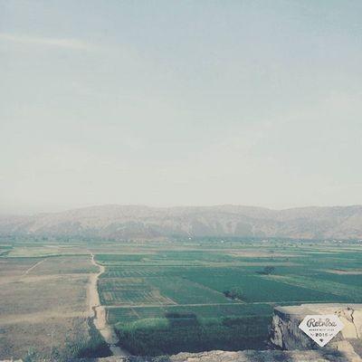 Go green 🌳 Jaisalmand Morning