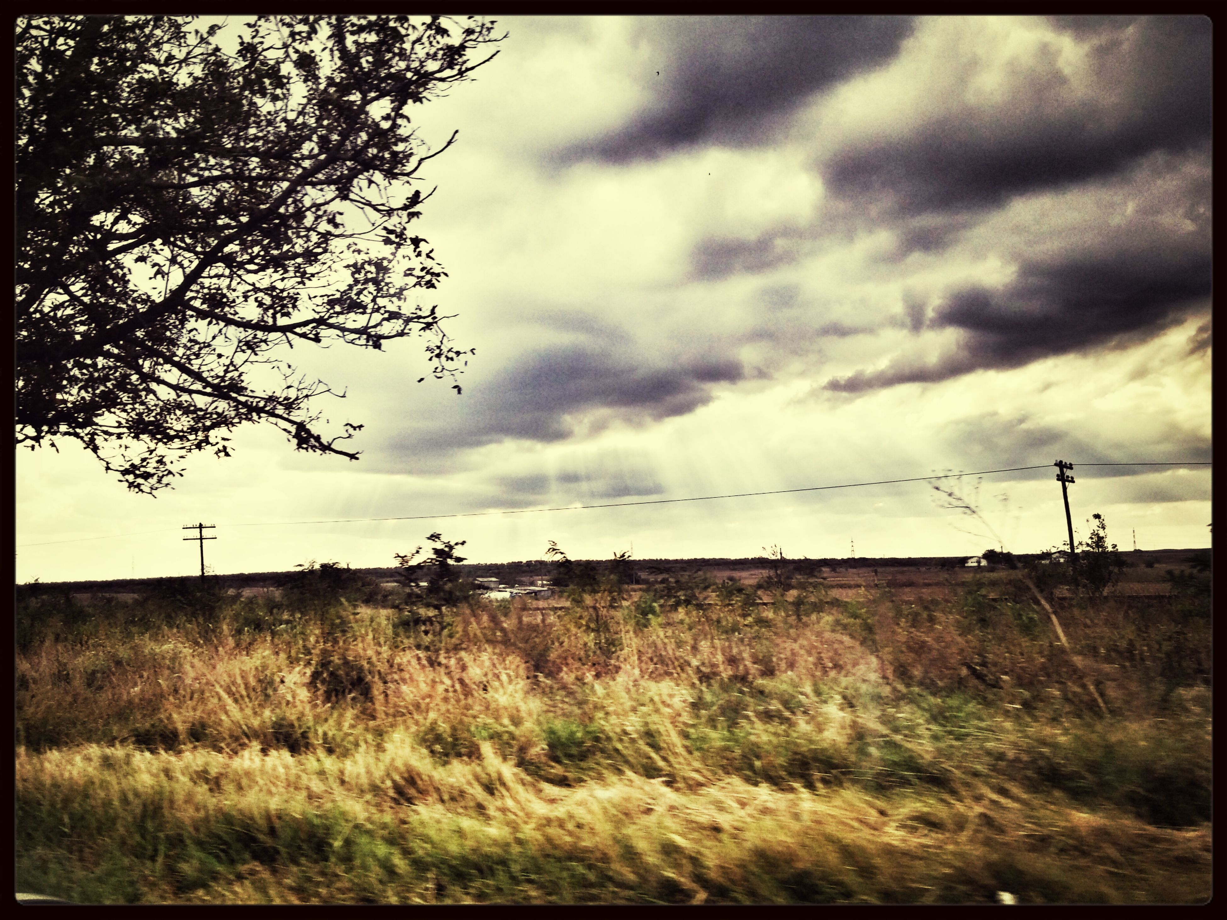 sky, transfer print, grass, field, cloud - sky, landscape, cloudy, auto post production filter, tranquil scene, tranquility, grassy, cloud, nature, scenics, beauty in nature, rural scene, overcast, non-urban scene, growth, animal themes