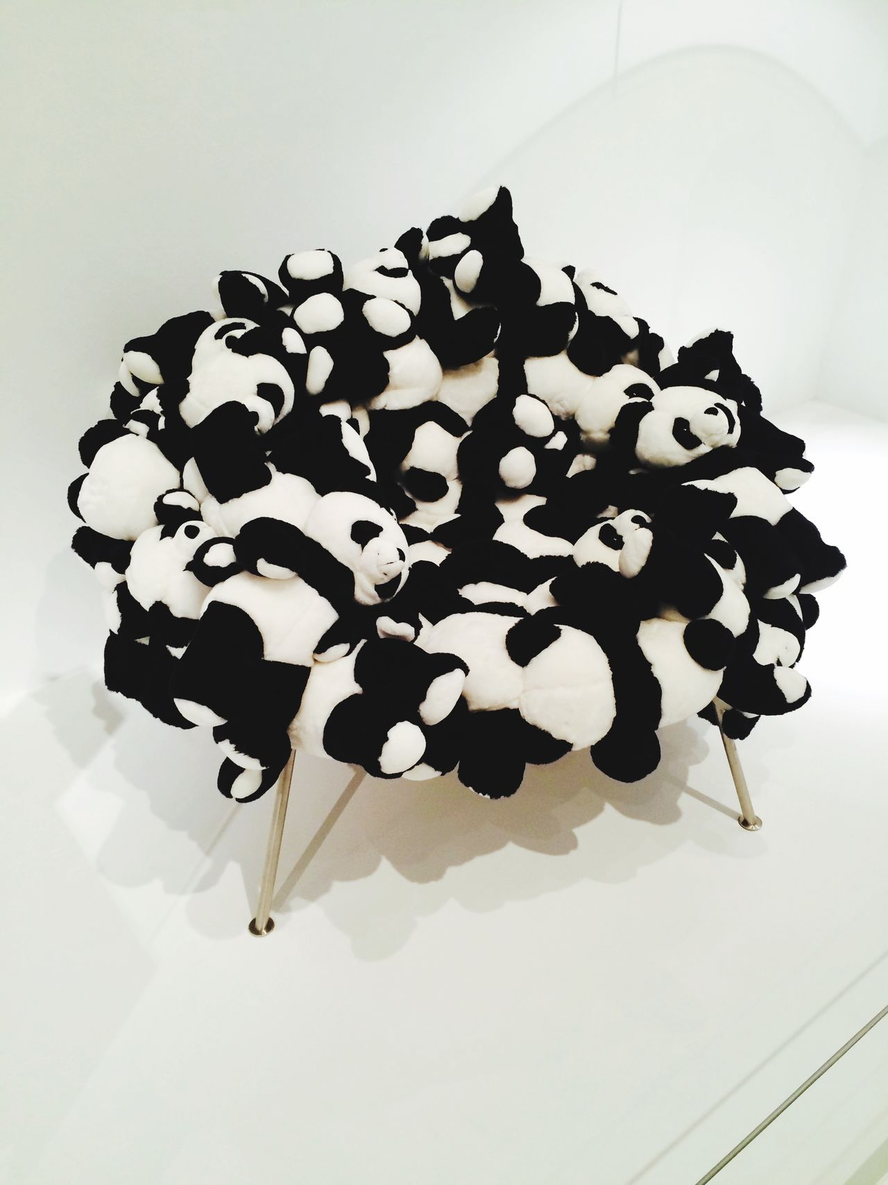 Panda Bears Panda Bear Cute