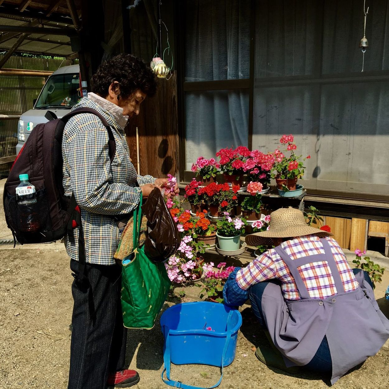 Subject : Two women - One Taking Care of the Flowers and the Other Looking at Them by Her Side. Beauty In Nature Real People People Wemen Crouching Standing Flower Freshness Multi Colored Day Outdoors . Taken at Yamano in Fukuyama, Japan on July 23, 2017 ( Submitted on July 6, 2017 )