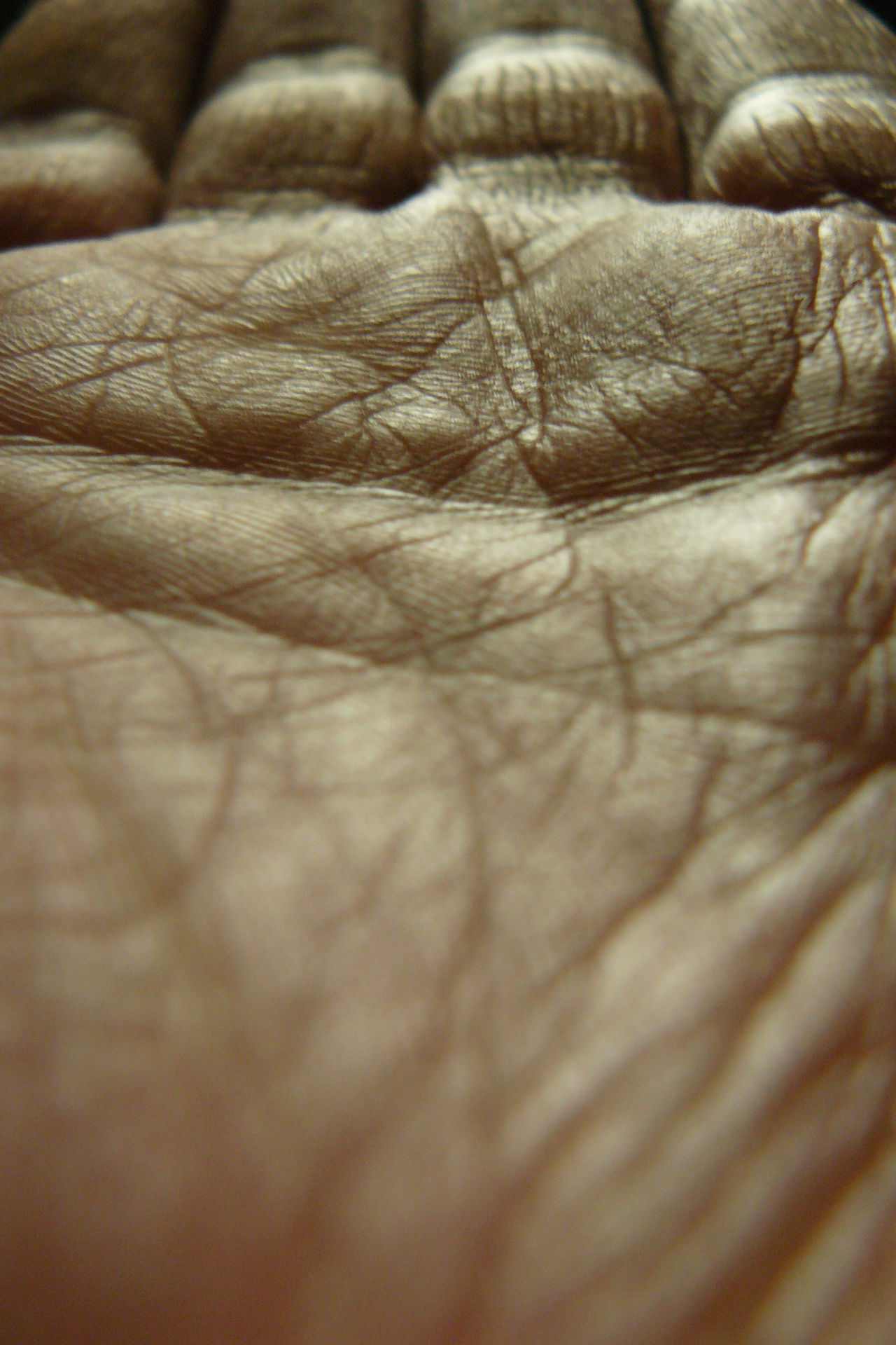 Close-up Full Frame Hand Human Skin No Flash Reflection Selective Focus