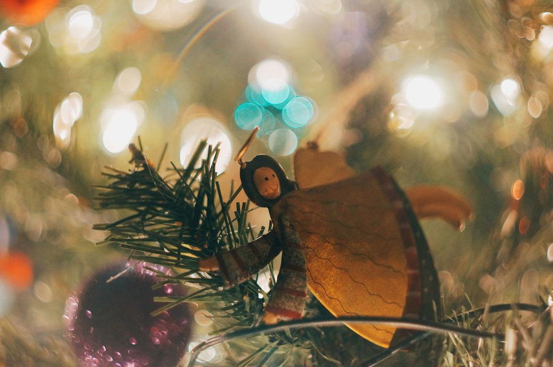 Swirl of light. Festive Season Christmas Tree Bokeh Lights Depth Of Field