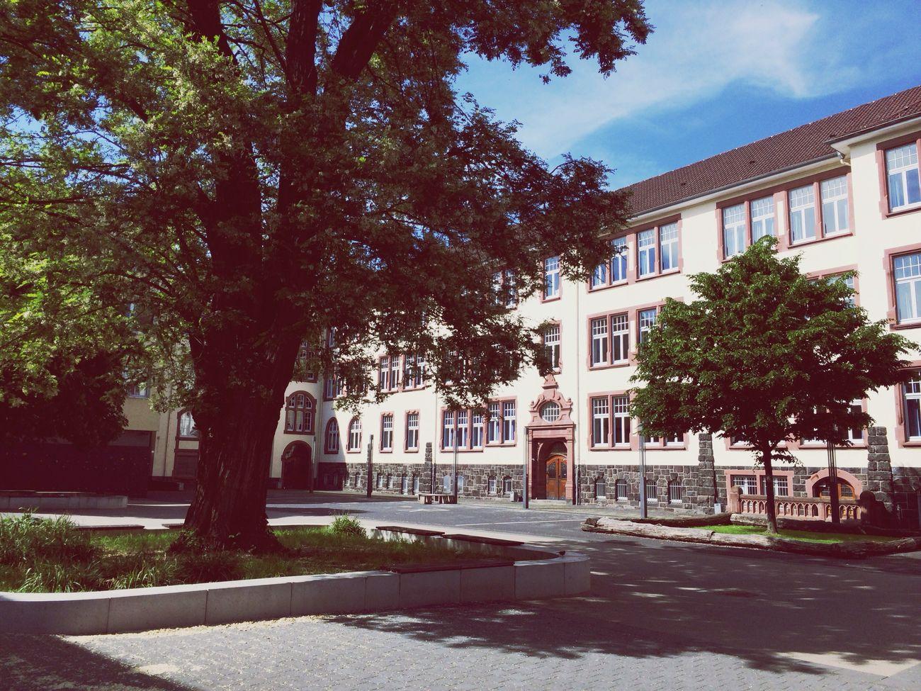 Wählen Europäischesparlament an meiner alten Schule