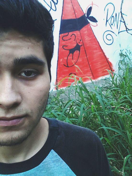 Rone Graffiti Hardsoulrebel