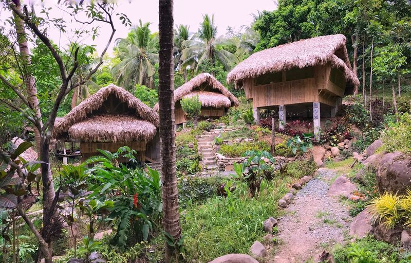 Mt. Purro Nature Reserve: Coming soon on @wheninmanila ❤ Watch out for my story on this stunning hidden treasure called Mt. Purro Nature Reserve 🌳 Truly a beautiful place with a story that should be shared with the world 🌏 Nature Plant Thatched Roof Tranquility Outdoors Beauty In Nature Growth No People Tranquil Scene Tree Grass Day Scenics Architecture Rice Paddy Sky Japanese Garden Jaysalvarez Mtpurronaturereserve The Great Outdoors - 2017 EyeEm Awards